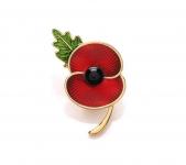 Everlasting Poppy Brooch