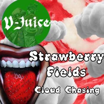 Vjuice Strawberry Fields 100ml 3mg